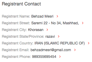 We found that Mesri also owned mesri[.]ir and discovered a potential accomplice's name and email address.